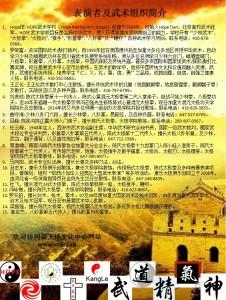 中文海报JPG2